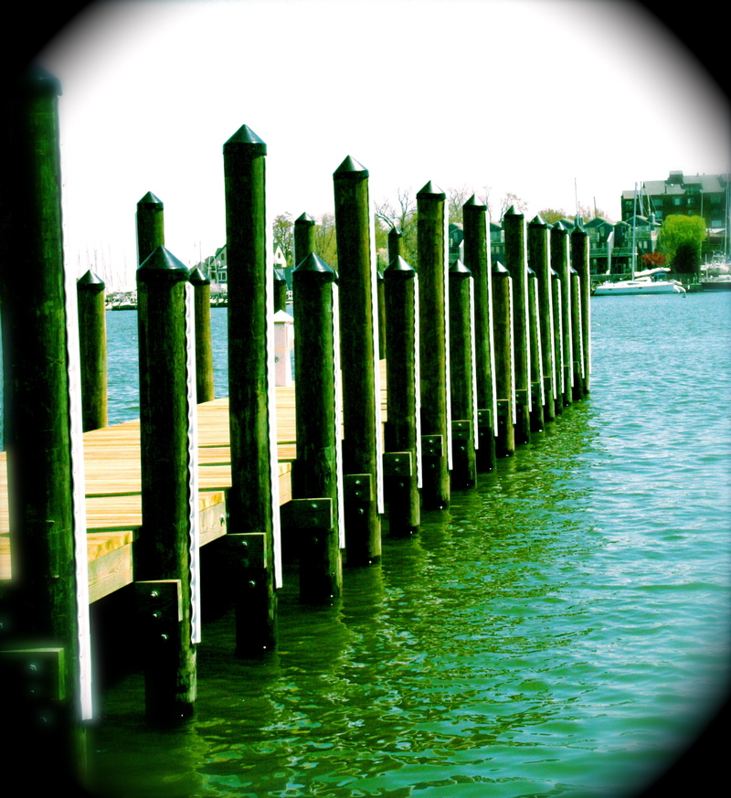 Annapolis_water_2